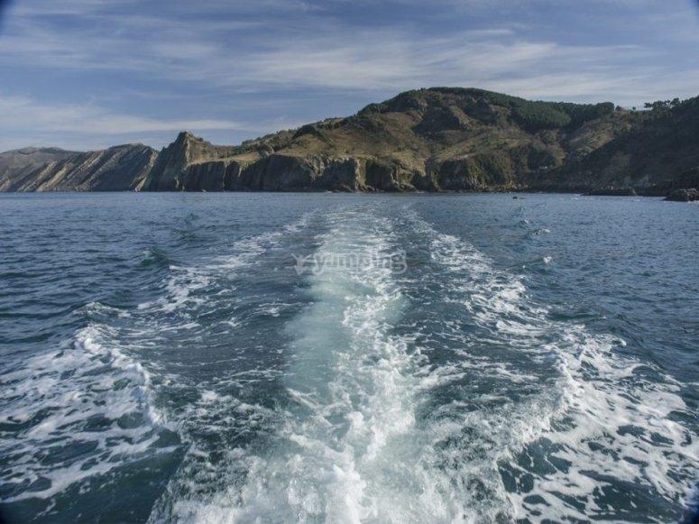 A toda velocidad en busca de los delfines