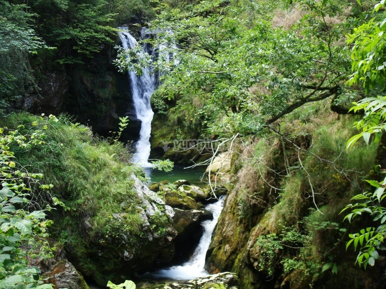 Cascadas en el Parque de Redes
