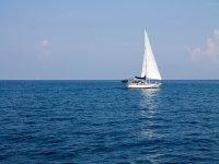 Navegando con vela