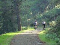 Naturaleza en bicicleta de montaña