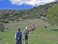 excursionistas caminando por el monte