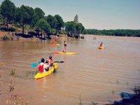 Los paseos en canoa