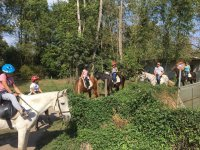 通过Bosc de Tosca骑马游览1小时