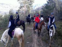 The forests of Alava on horseback