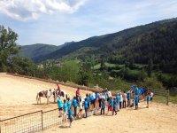 Campamentos en verano para ninos