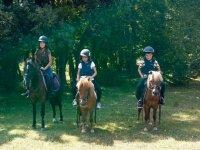 Rutas a caballo por el bosque