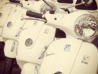 摩托车日落标志Bullimoto车队