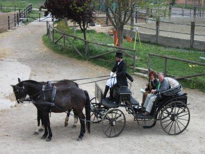 在Olot周围乘坐1号车的浪漫之旅