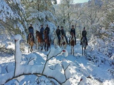 Hípica San Román Ranch