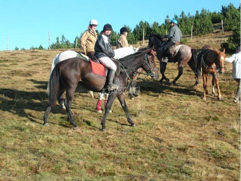 A caballo