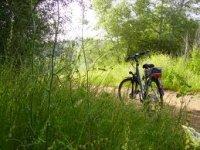 Doñana Route