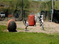 grupo de jovenes escondidos detras de unos elementos de un campo de paintball