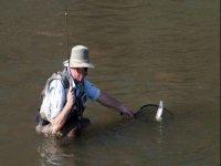 Pesca alla trota