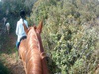 On horseback along the path of Las Herrerías