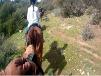 On the horse during the route