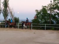 Riding lessons with the moon