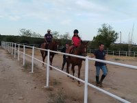 Jogging on the horses on the track