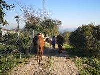 Horseback riding around the equestrian center