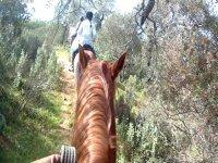 Horse riding route in Córdoba