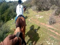 On the horse in route