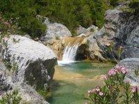 vista de un paisaje natural con agua