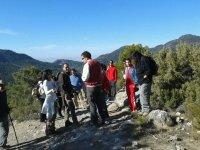 grupo de personas caminando por la naturaleza