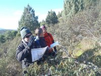 1-day Orienteering Course in Madrid