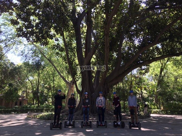 Segways en el parque