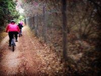 的金卡纳举办山地自行车山地自行车路线