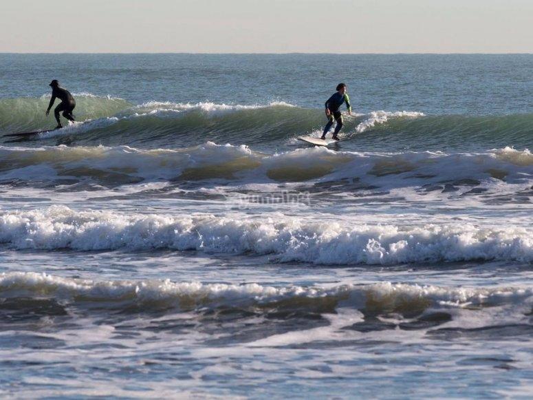 Tieni la tavola da surf