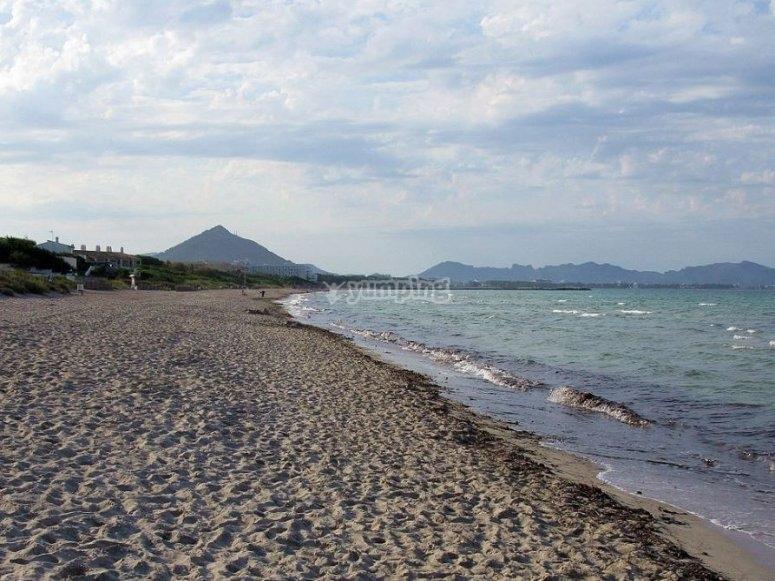 Playa en Alcudia
