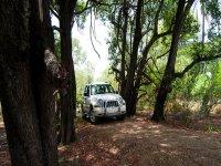 Todoterreno en los bosques de Burgos