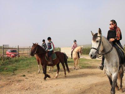 Clase de equitación en Zaragoza de 1 hora