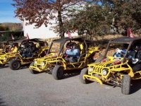 Buggies prepared for the route