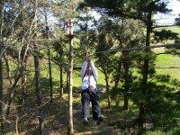Tirolina en el bosuqe