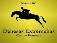 Dehesas Extremeñas Centro Ecuestre