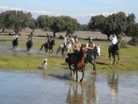 Horse Expeditions