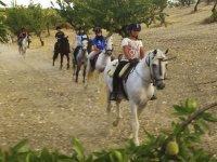 During the horseback ride