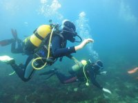 Buzos en el fondo marino