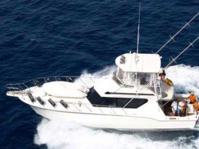 Marina Rubicón Paseos en Barco