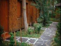 Zona de acceso al bungalow
