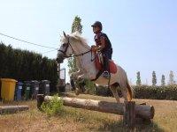 Saltando con maestría sobre el caballo el obstáculo