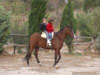 Paseos a caballo para menores