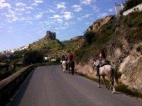 A la orilla de la carretera con los caballos