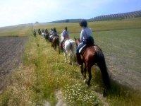 Paseo por el campo con los caballos