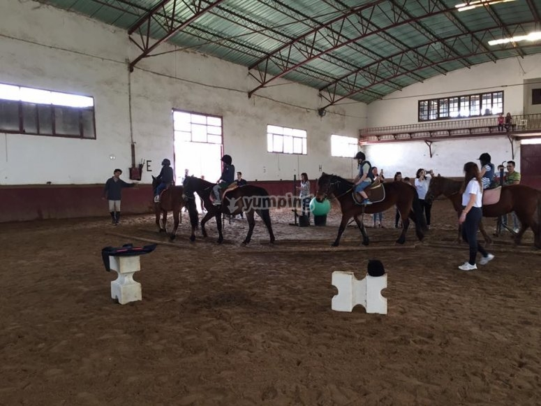 Aprendiendo a montar a caballo