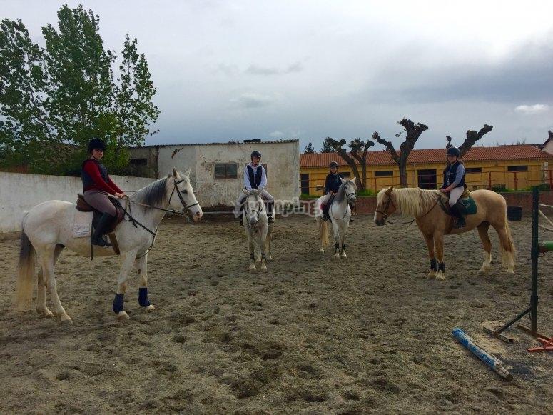 Clase de equitacion adultos