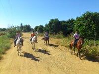 Excursiones a caballo por Gerena, Sevilla