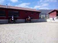 Rodeando la pista con los caballos