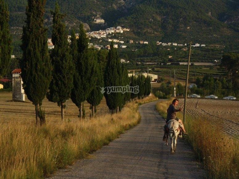 人走在驴--999-游览的学生